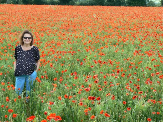 blog Amanda 4
